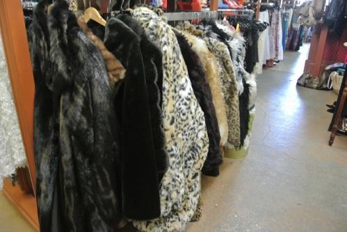 Fall Fashions 3
